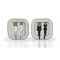 Type C Cable in Acrylic Box 2.1 Amp
